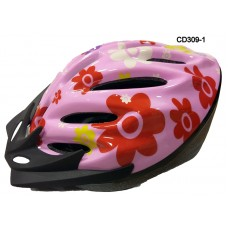 CD 309-1 - Casco